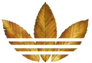 adidas_originals_logo.jpg