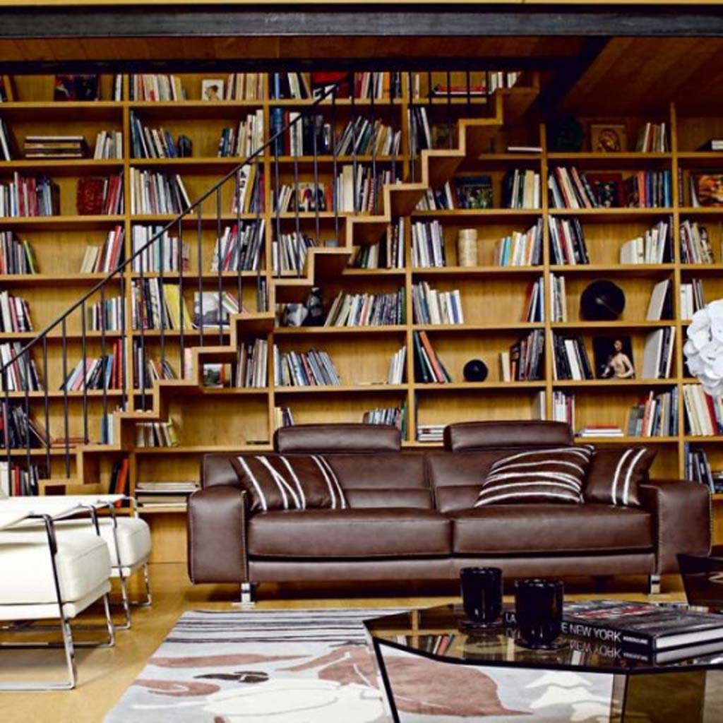 bookshelf-couch-library-furniture.jpg